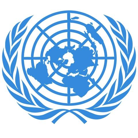 Organización de las Naciones Unidas.