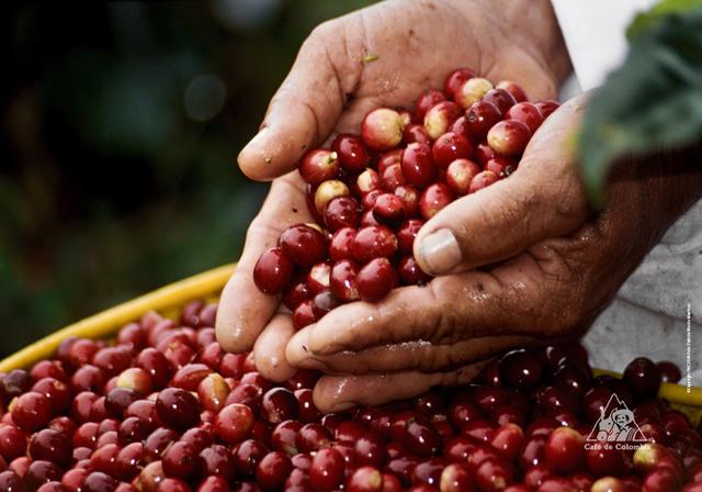 Evolución positiva del comercio exterior colombiano
