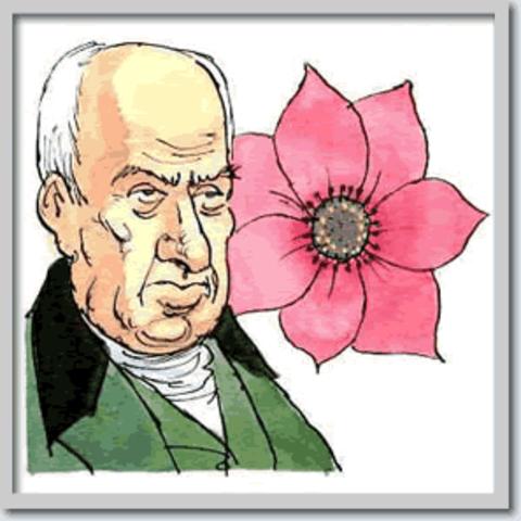Robert Brown va descobrir el nucli tot observant cèl·lules vegetals.