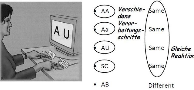 Kategorisierungsexperiment, Posner