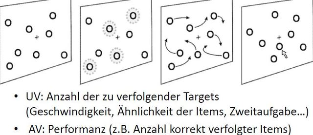 Multiple Object Tracking (MOT), Pylyshyn + Storm