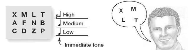 Experiment zum sensorischen Register, Sterling