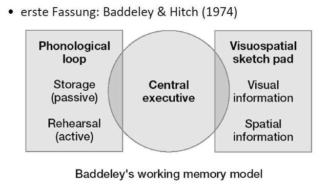 Arbeitsgedächtnis, Baddeley + Hitch