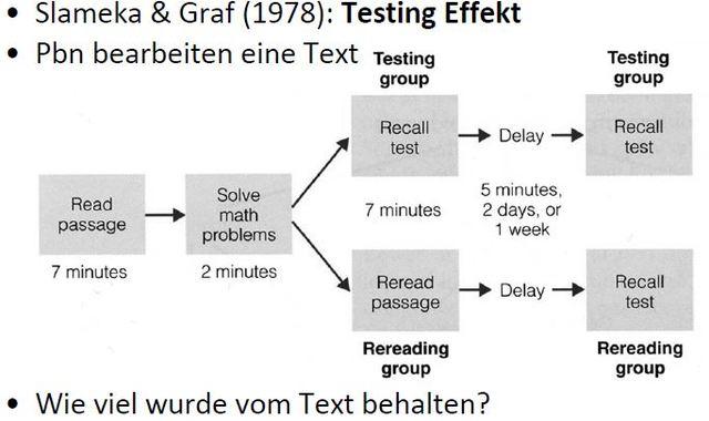 Testing Effekt, Graf + Slamenka