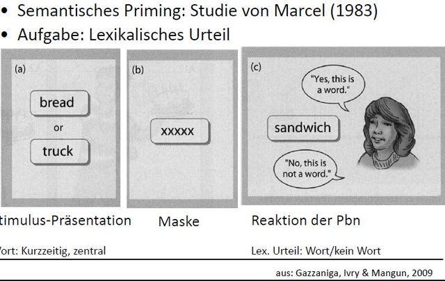 Semantisches Priming, Marcel