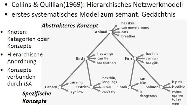 Hierachisches Netzwerkmodell, Collins + Quillian