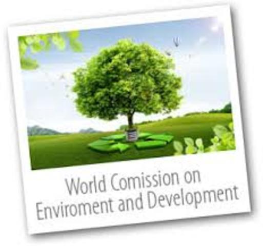 """ONU: *Comisión Mundial sobre Medio Ambiente y Desarrollo"""""""
