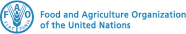 """""""Desarrollo"""", Definición de la FAO (Food and Agriculture Organization of the United Nations)"""