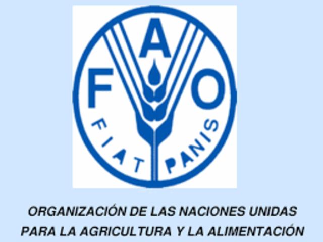 """""""Sustentabilidad"""", Definición la FAO (Organización de las Naciones Unidas para la Alimentación y la Agricultura)"""