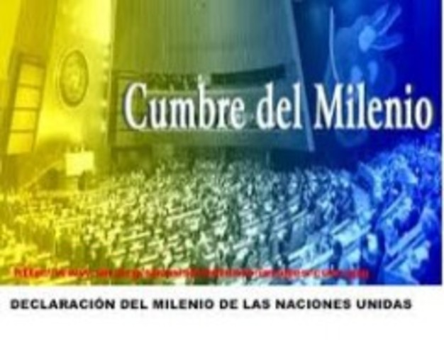 "ONU: ""Cumbre del Milenio"""