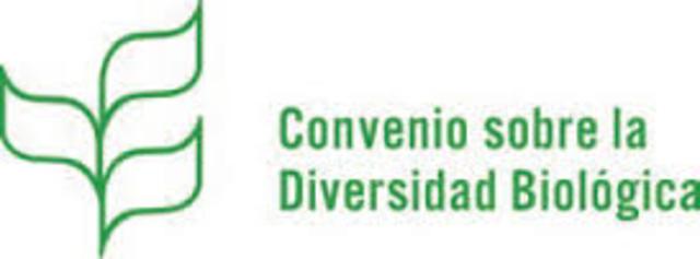 """VII Reunión Ministerial de la Conferencia sobre la Diversidad Biológica: """"Declaración de Kuala Lumpur"""""""