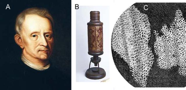 Robert Hooke