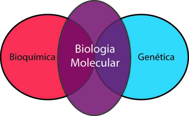 Comienzo de la Biología molecular