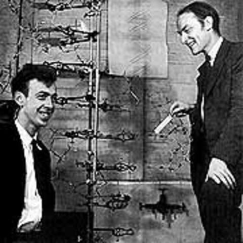 Watson y Crick