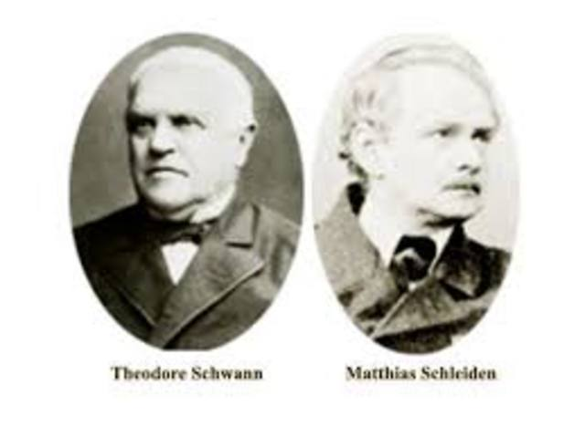 Theodor Shwan y Matias Scheleiden