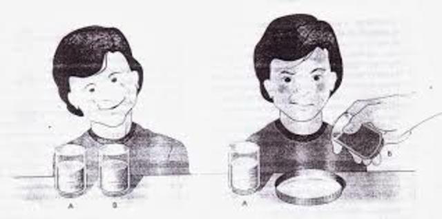 Bruner publica su primer trabajo sobre percepción