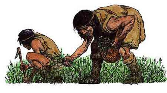 prehistoria 4200 a.c