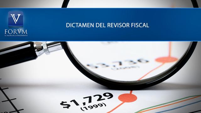 Reglamento Contenido del Informe y del Dictamen del Revisor Fiscal.
