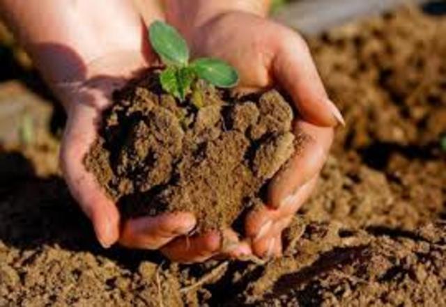 Ley de Conservación del suelo