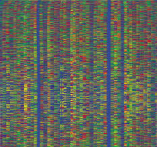 Sequencing of the Human Genome