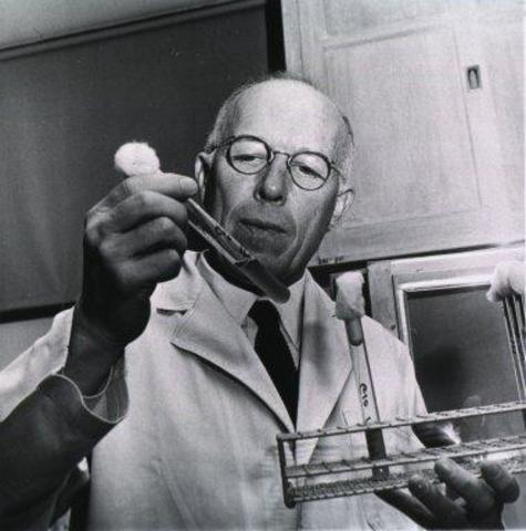 RENÉ JULES DUBOS (1901-1982)
