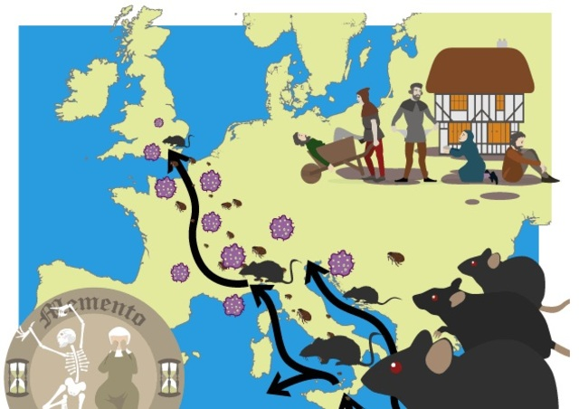 1348-1350 D.C. THE BUBONIC PLAGUE