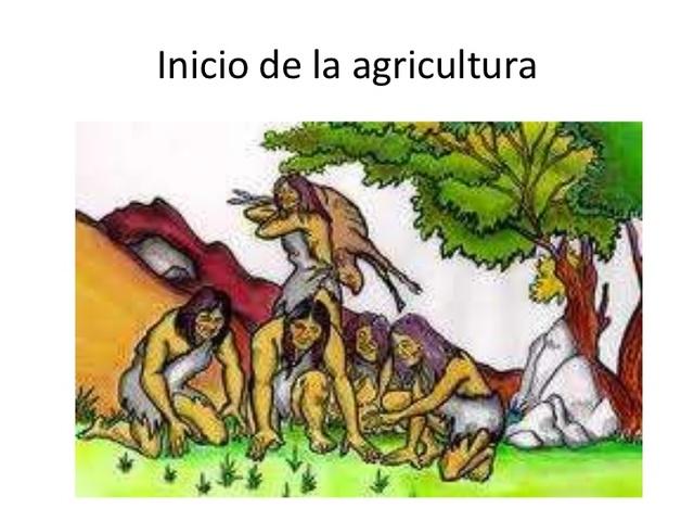 Se descubre la Agricultura.
