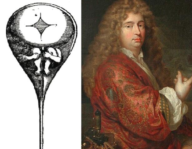 Nicolás Hartsocker propuso la teoría del homúnculo