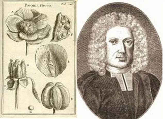 Rudolf Jakob Camerarius confirma la reproducción sexual en las plantas