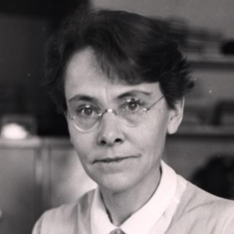 Barbara McClintock observa el entrecruzamiento cromosómico