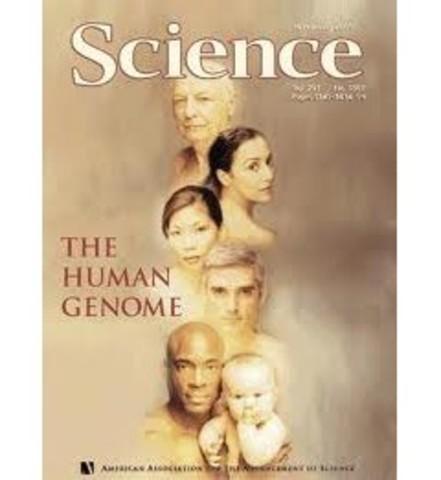 Primeras secuencias del genoma humano por parte del Proyecto Genoma Humano