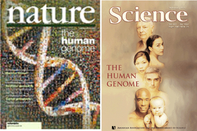 se publica la serie del genoma humano