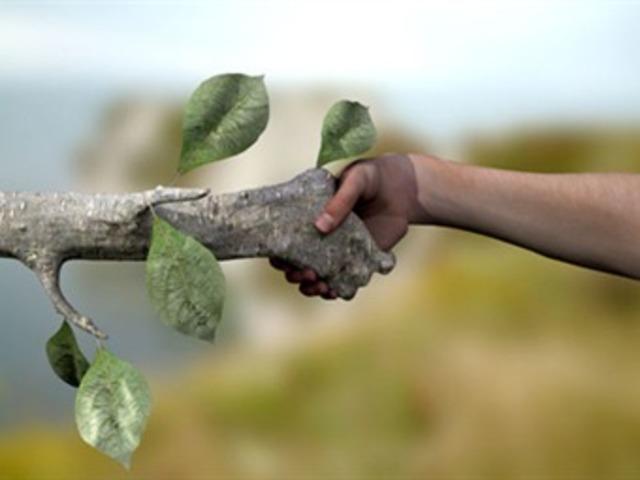 """Se adiciona al articulo 25 Constitucional la frase """"cuidando su conservación y el medio ambiente"""""""
