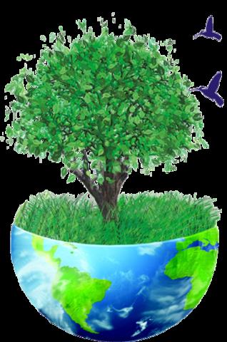 Se expide la Ley General de Equilibrio Ecológico y Protección al Ambiente (LGEEPA).