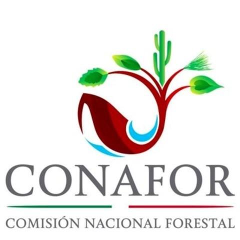 Creación de la Comisión Nacional Forestal