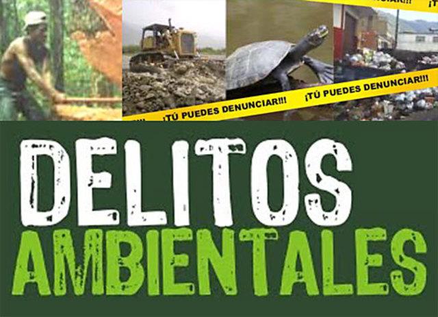 Delitos Contra el Ambiente y la Gestión Ambiental.