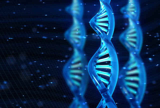 Pruebas de ADN