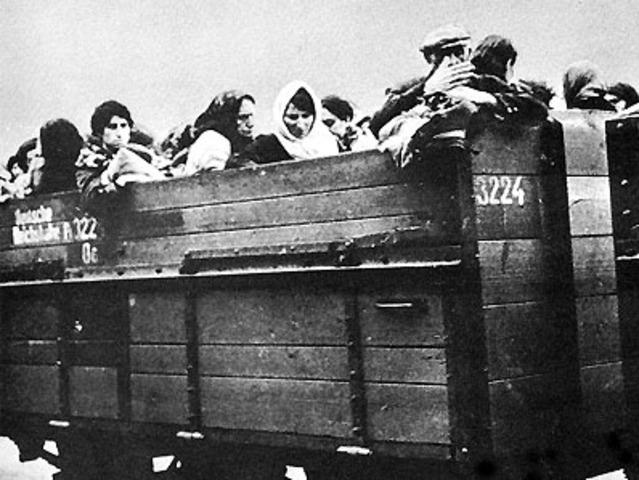 Csillags Deported From Satu Mare Ghetto