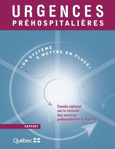 Rapport Dicaire
