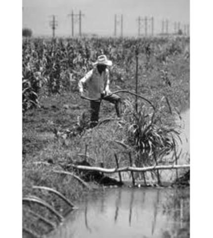 Código agrario 1990