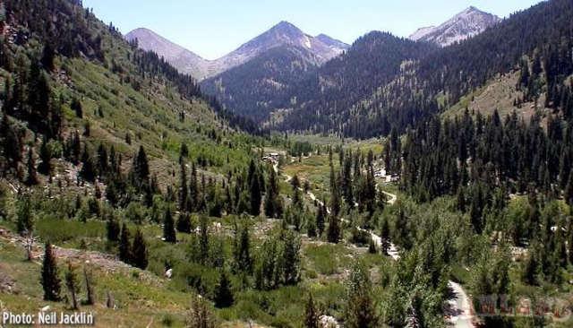 Yosemite plus Sequoia National Park