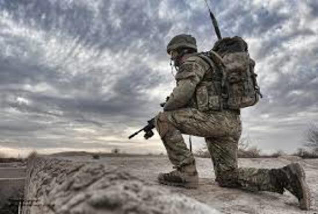 Bosnia - Military Effectiveness