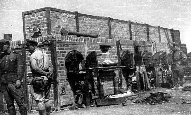Las tropas rusas liberan el campo de concentración y exterminio de Majdanek (Polonia)
