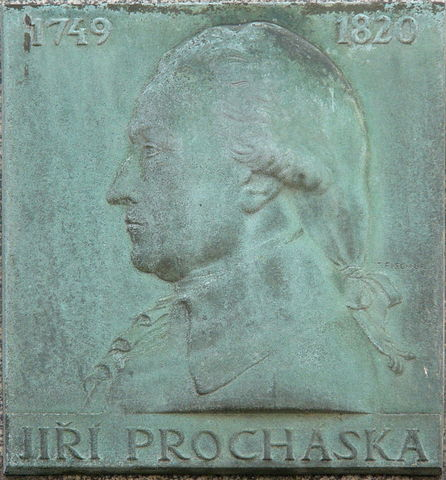 Georg Prochaska