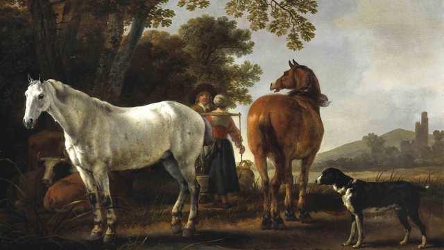 Domestication of Horses