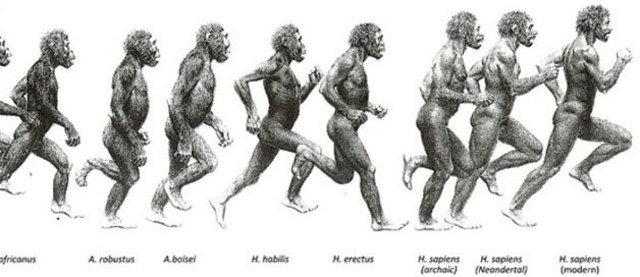 Early Evolution of Homo Sapiens 200,000 years ago ~ Present