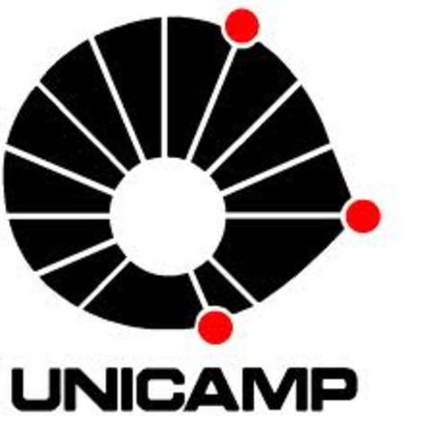 Cria-se um grupo interciplinar na UNICAMP