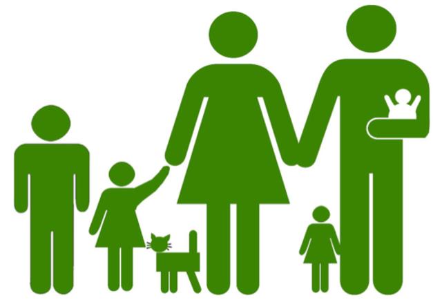 1970-80 Intervención familiar