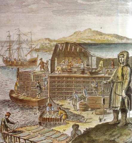 The European Fisheries