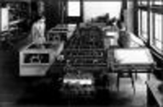 analog computer (for differential equations)